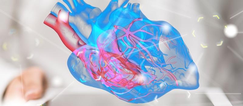 Il ponte miocardico: una condizione congenita del cuore che può occludere le arterie