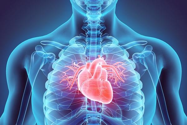 Chirurgia valvolare aortica e mitralica: nuove metodiche mininvasive al Salus Hospital di Reggio Emilia