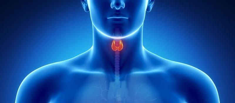 Fibrillazione atriale? Attenti alla tiroide.