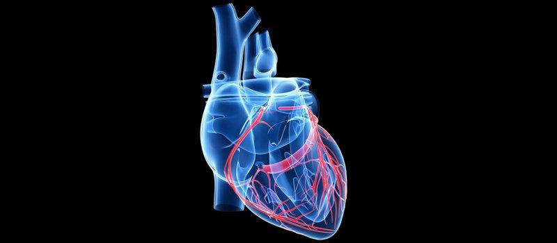 I bypass arteriosi allungano la vita