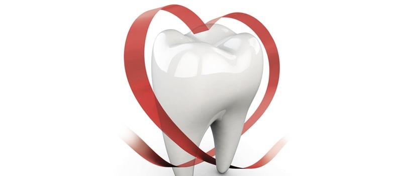 La prevenzione dell'endocardite batterica inizia dalla cura dei denti