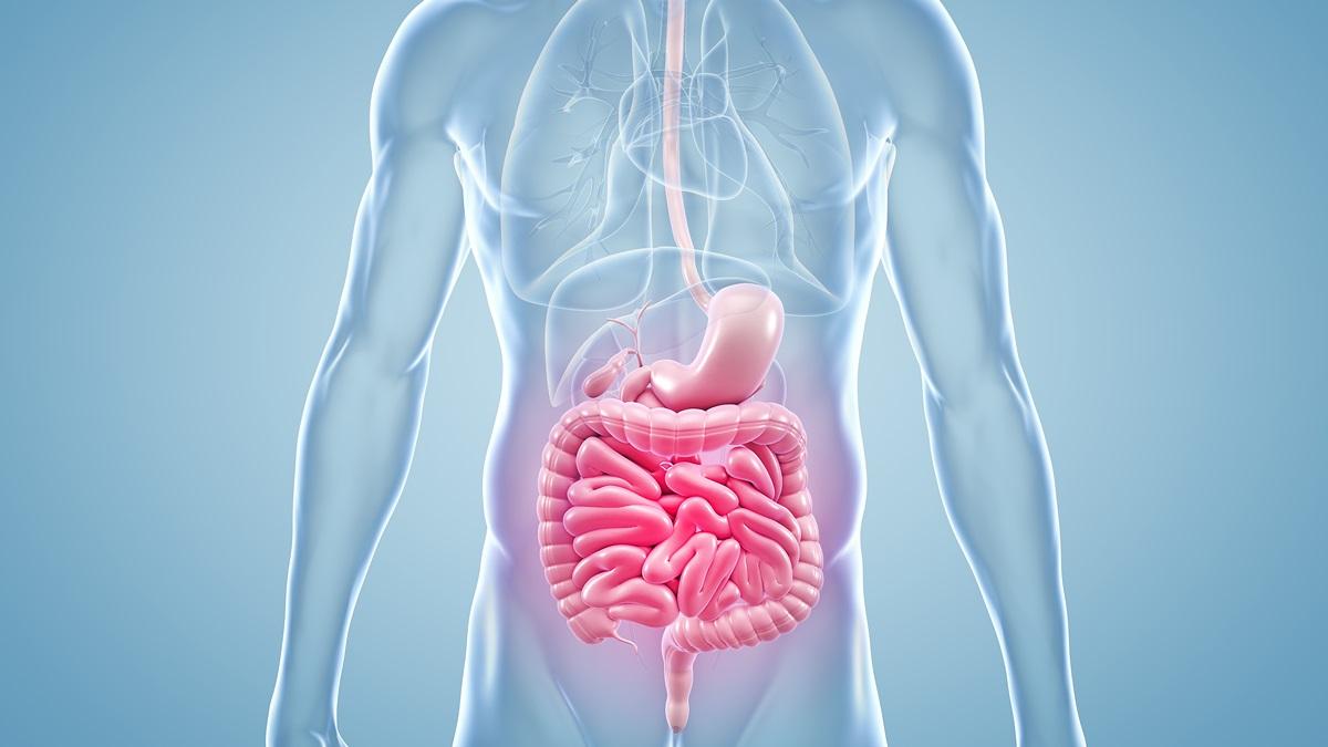 I check up per la salute gastrointestinale