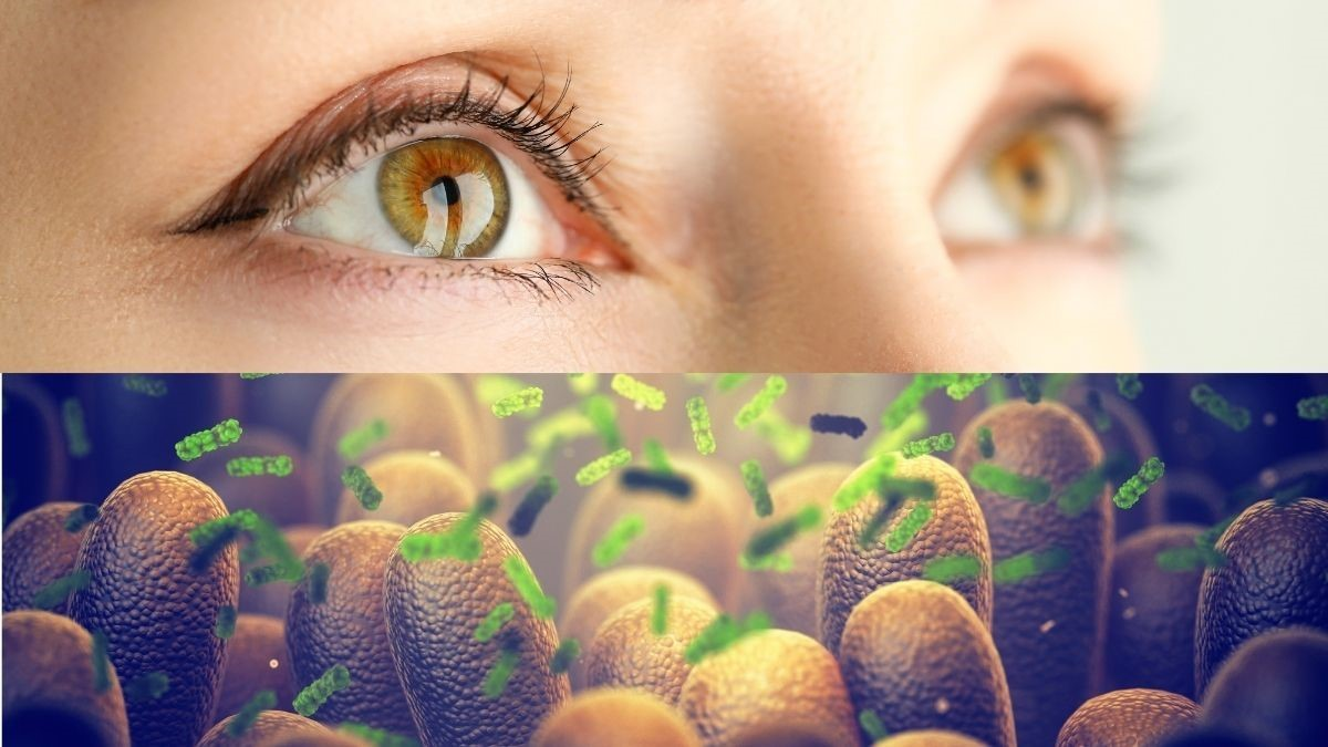 Microbiota e patologie oculari: che relazione c'è?