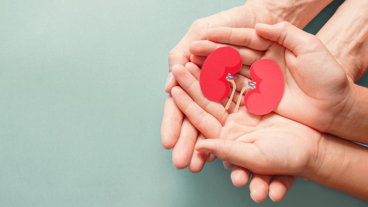 Tumori del rene e delle vie urinarie, trattamenti sempre più personalizzati